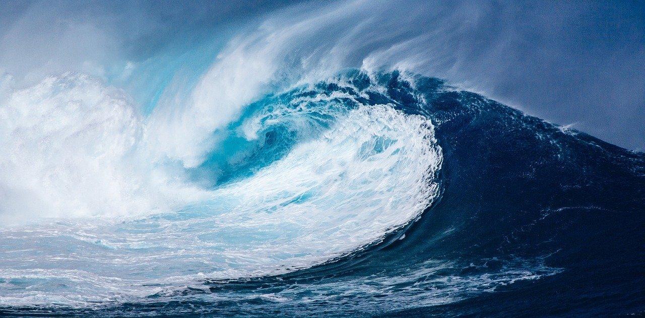 wave, ocean, sea-1913559.jpg